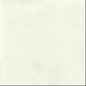 QUINEL LEATHERLIKES QSO6101 Blanc